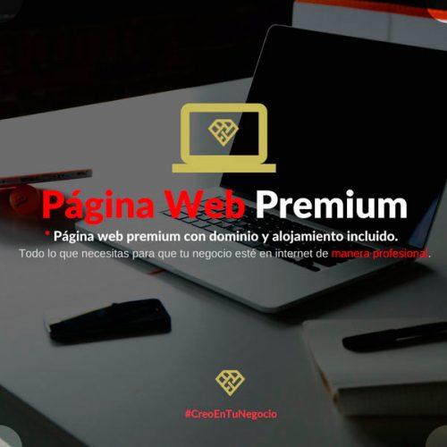 Página web Premium
